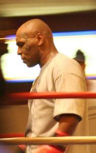 Mike Tyson : Mike Tyson 5