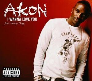 Akon - I Wanna Love You single cover