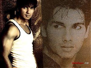 Shahid Kapoor : shahijul9 1024