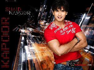 Shahid Kapoor : sha13a 1024