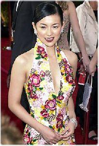 Actress zhang ziyi : zz25