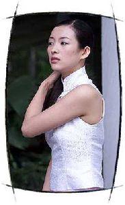 Actress zhang ziyi : zz41