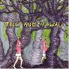 Tilly and the Wall Wild like children album cover