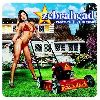 Zebrahead Playmate of the Year album cover