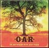 O.A.R-In Between Now and Then album cover