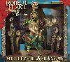 Robert Plant and the Strange Sensation Mighty Rearranger album cover