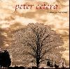 Peter Cetera - Another Perfect World album cover