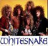 Whitesnake : whitesnakeXCXV