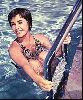 Actress liz taylor : 9