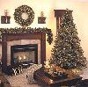 Christmas Tree : prelit carolina mixed pinetree